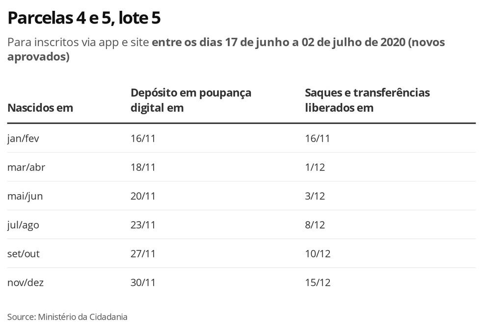 Lote 5, Parcelas 4 e 5 — Foto: Economia G1