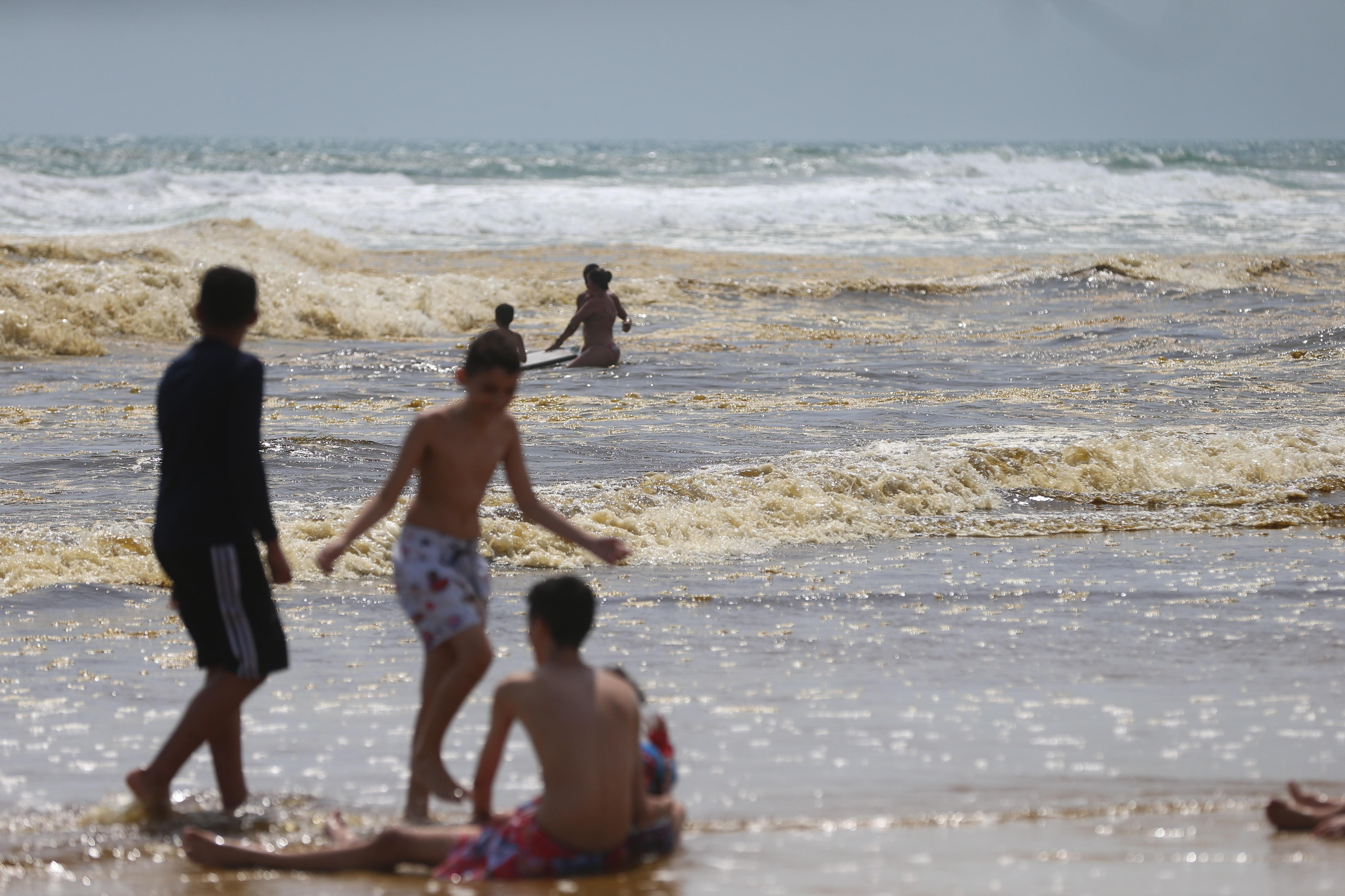 Fortaleza tem 19 trechos de praia próprios para banho neste fim de semana; confira o mapa