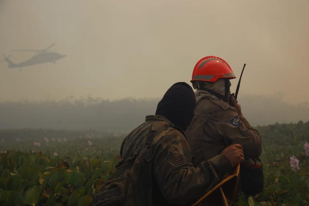 Equipes enfrentam a fumaça densa para combater as chamas — Foto: Corpo de Bombeiros - MT
