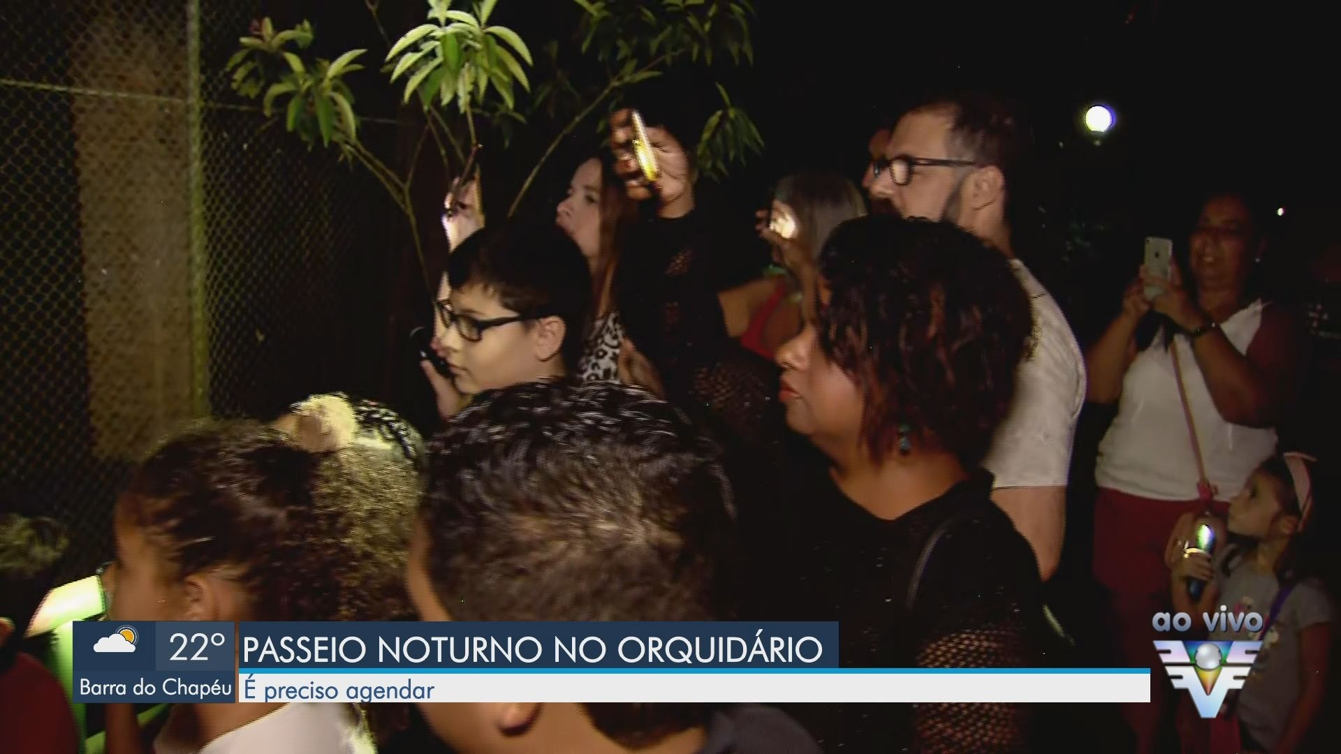 VÍDEOS: Jornal da Tribuna 2ª Edição de terça-feira, 14 de janeiro 2