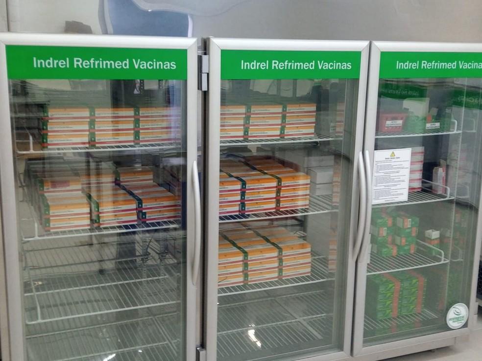 As mais de 8,6 mil doses já estão armazenadas em freezers aguardando o inicio da vacinação em Bauru — Foto: Priscila Medeiros/Prefeitura de Bauru
