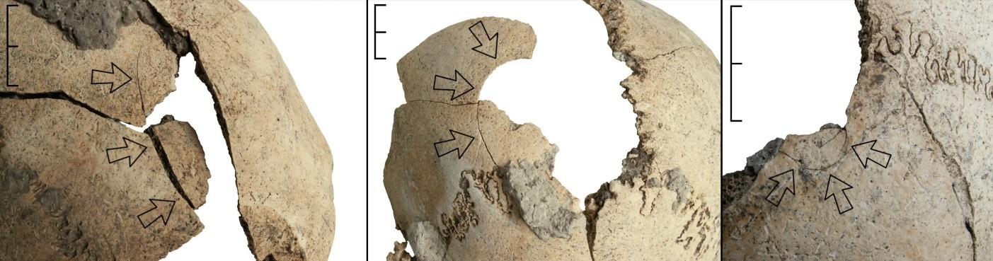 Crânios mostram brutalidade de assassinatos ocorridos no período Neolítico (Foto: Copyright Christian Meyer)