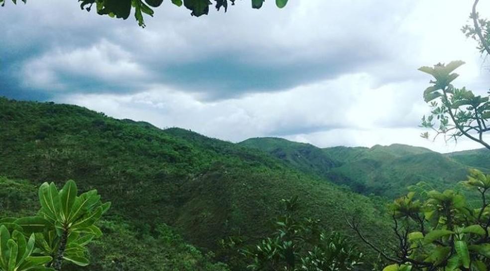 Área de Proteção Ambiental (APA) da Cafuringa, no DF — Foto: Arquivo pessoal