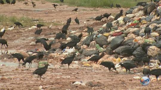 Leme tem o pior tratamento de lixo do estado de São Paulo, segundo Cetesb