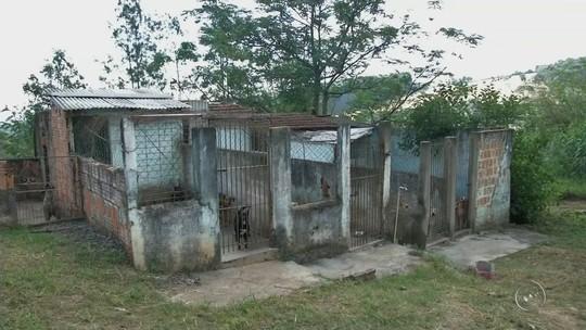 Abrigo de animais continua interditado por estrutura inadequada em Itararé