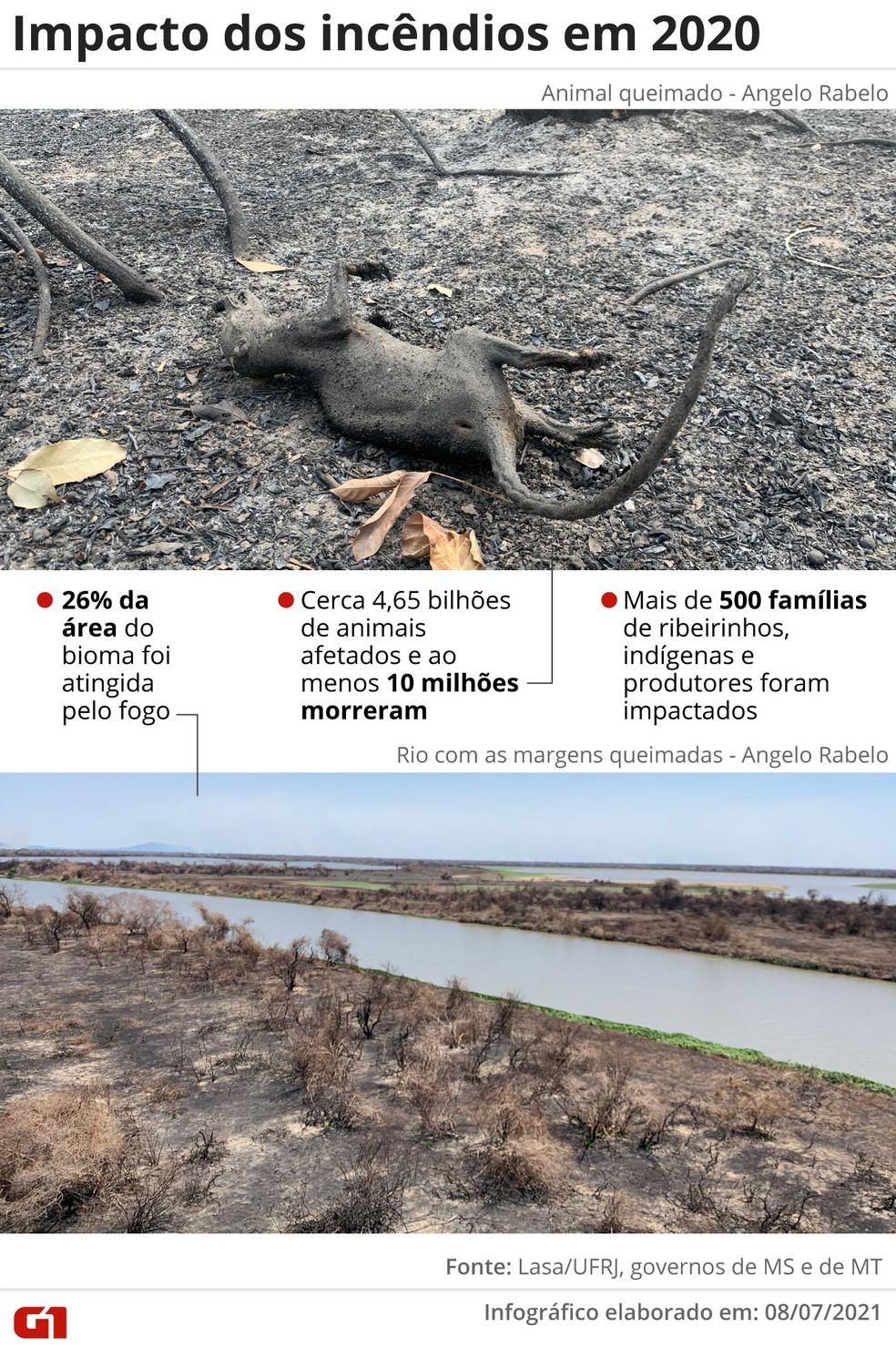 Situação do Pantanal em 2020 — Foto: Elcio Horiuchi/G1