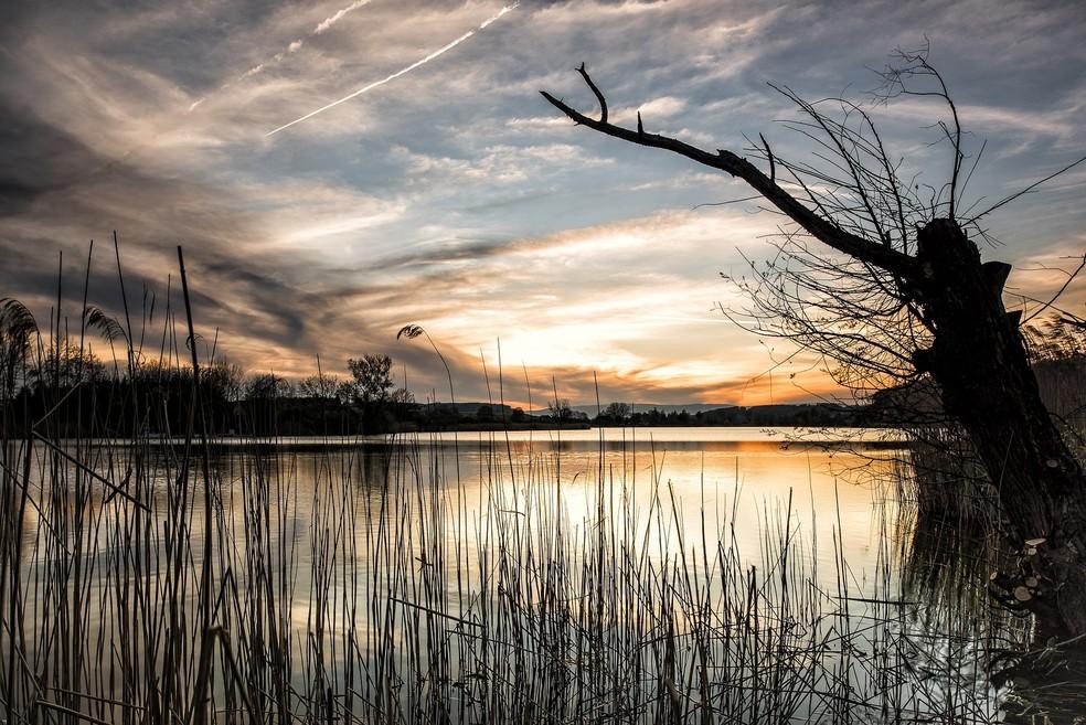 Precipitação eleva níveis de nitrogênio na água e afeta a biodiversidade (Foto: Pixabay)