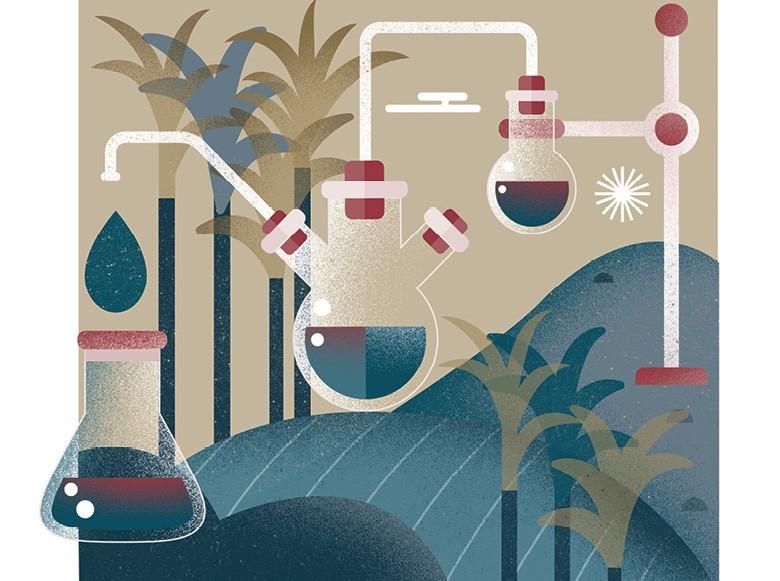 Bioenergia (Foto: ilustração: Bárbara Malagoli )