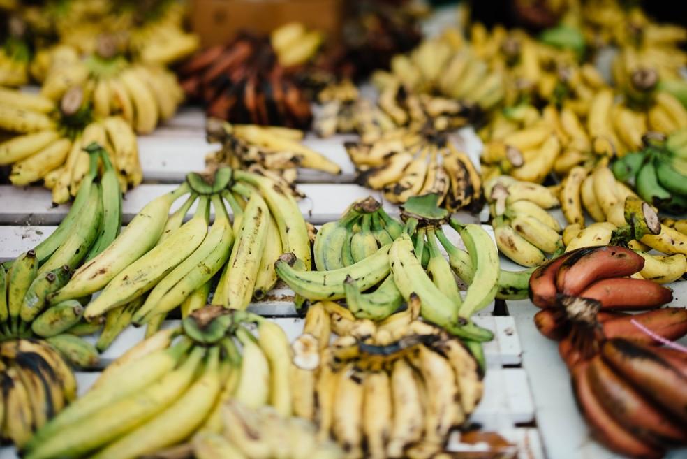 As bananas fazem parte da dieta de cerca de 400 milhões de pessoas no mundo todo, segundo a Universidade de Wageningen — Foto: Unplash